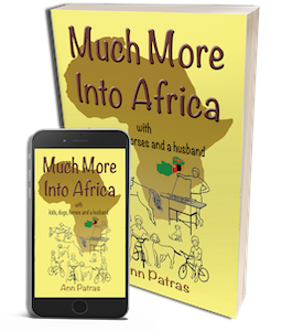 Much More into Africa published by Ant Press